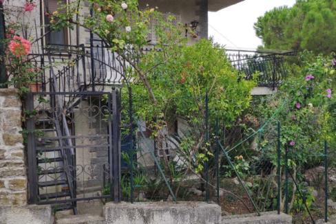 Immagine giardino1